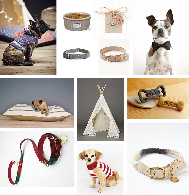 selection-shopping-chien