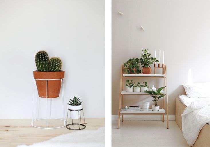 deco-plantes-interieur8