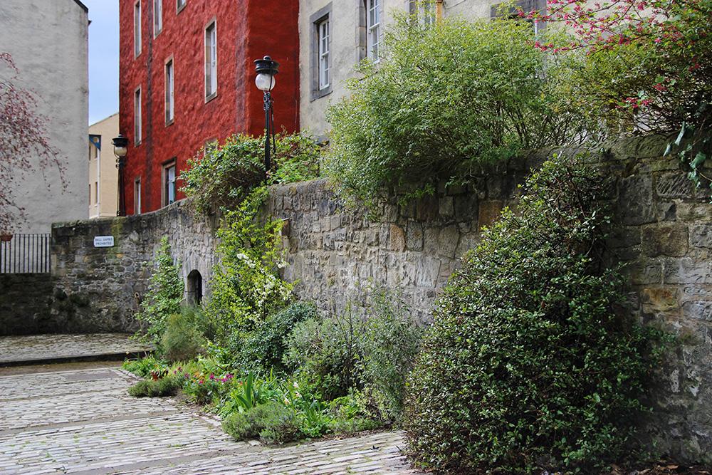 edimbourg-oldtown10