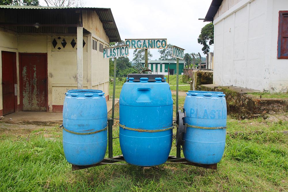plantation-recyclage