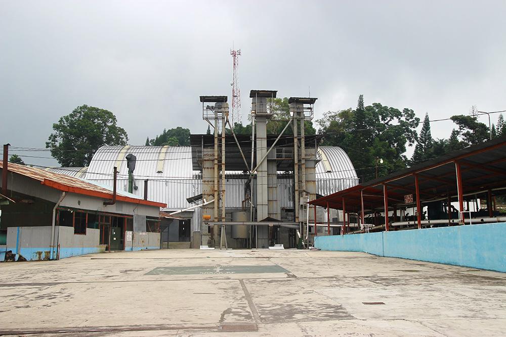 usine-macadamia-depulpage