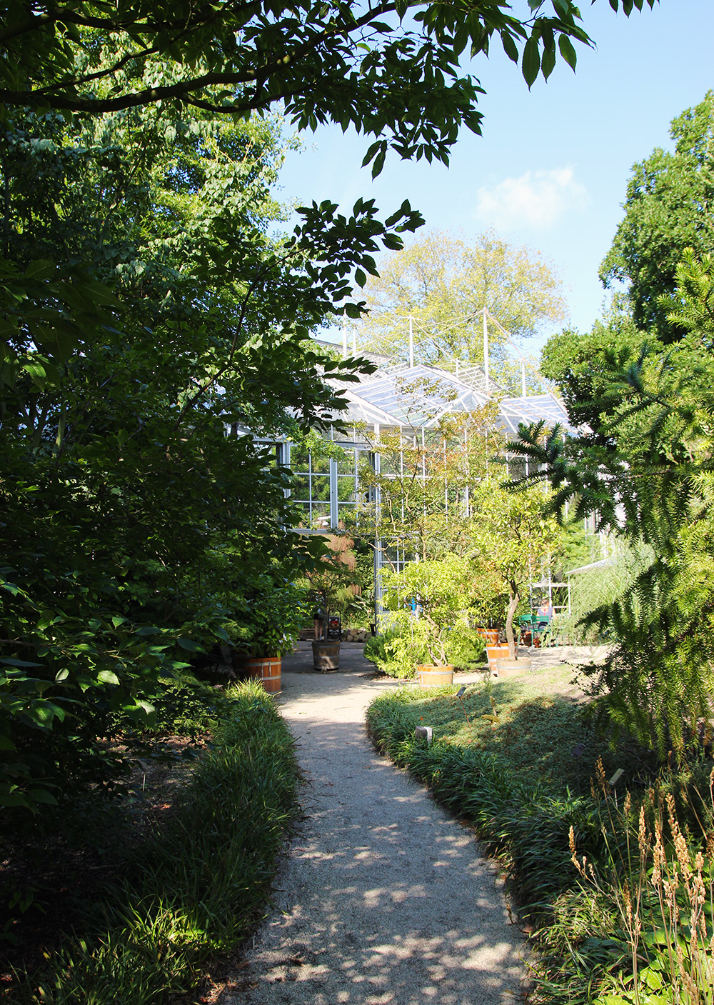 hortusbotanicus-amsterdam-jardins7