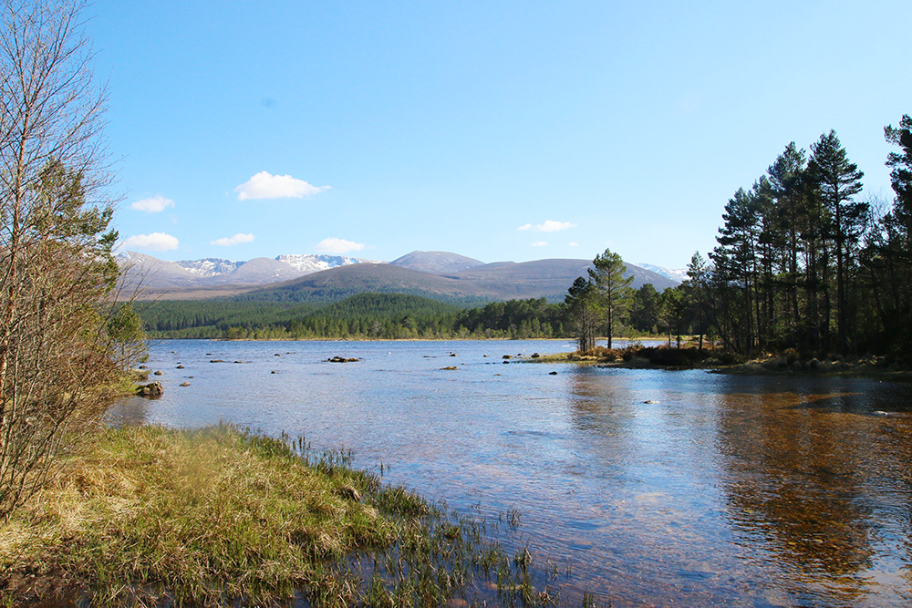 highlands-ecosse-aviemore5