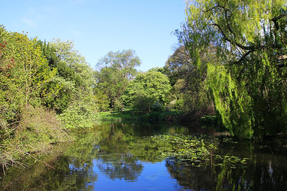 edimbourg-jardin-botanique3