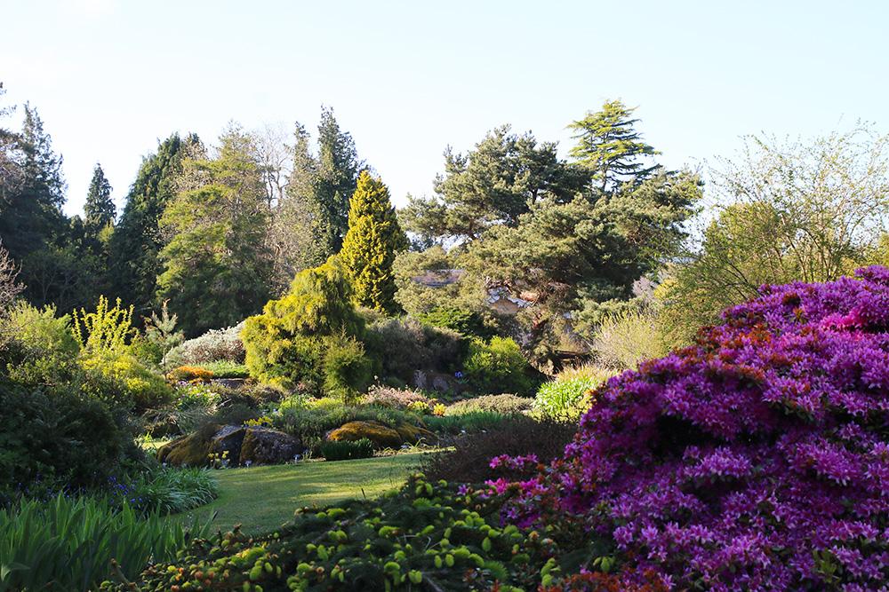 edimbourg-jardin-botanique5