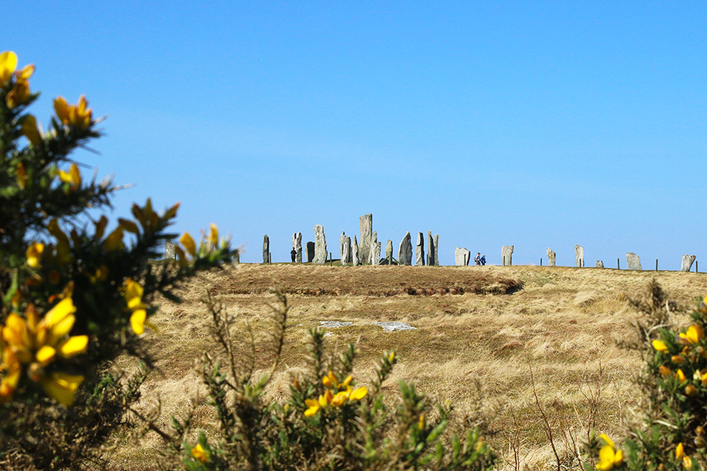 isle-lewis-callanish6