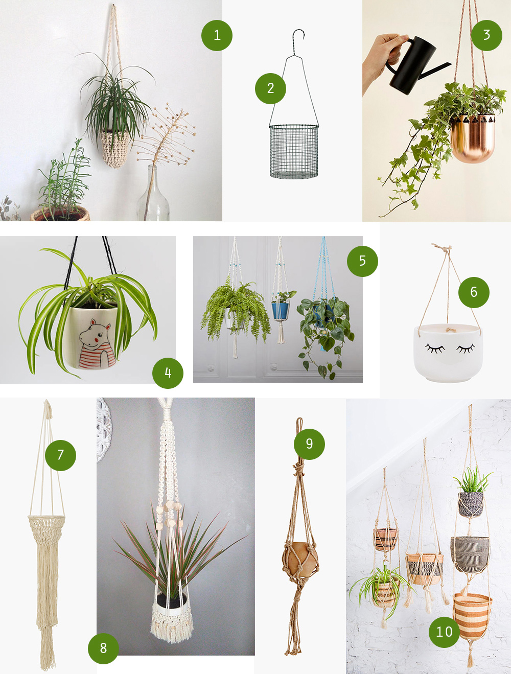 selection-suspensions-plantes