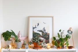 conseils-plantes-hiver