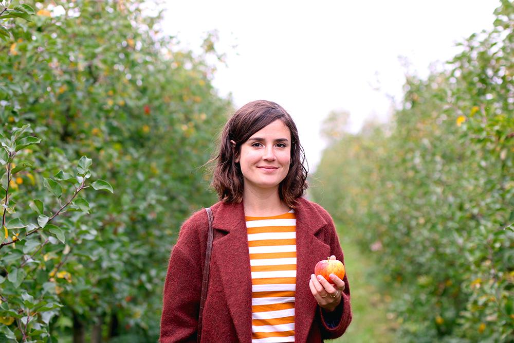 recoltes-automne-cueillette-pommes-amsterdam13