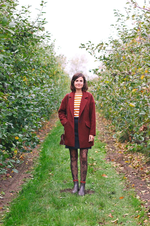 recoltes-automne-cueillette-pommes-amsterdam3-bis