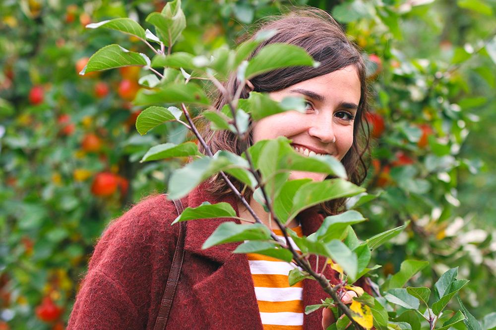 recoltes-automne-cueillette-pommes-amsterdam5