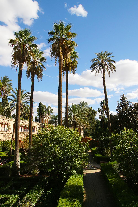 seville-alcazar15