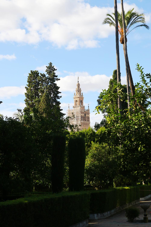 seville-alcazar16