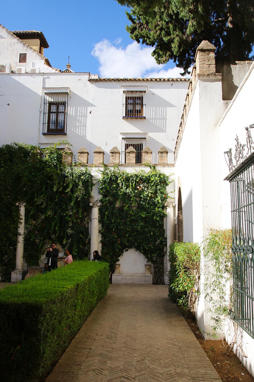 seville-alcazar8