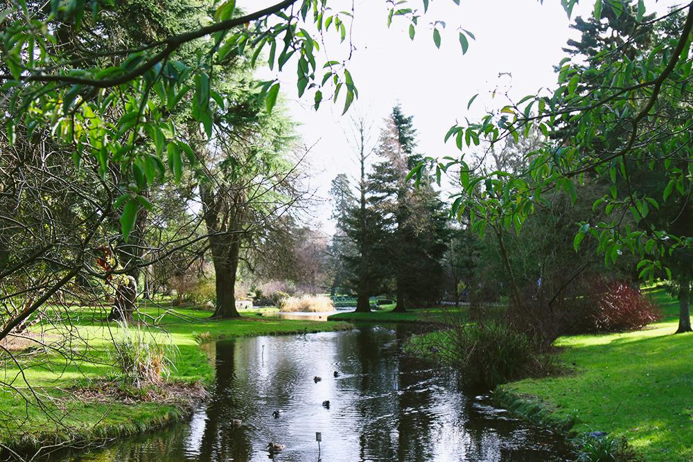 dublin-jardinbotanique10