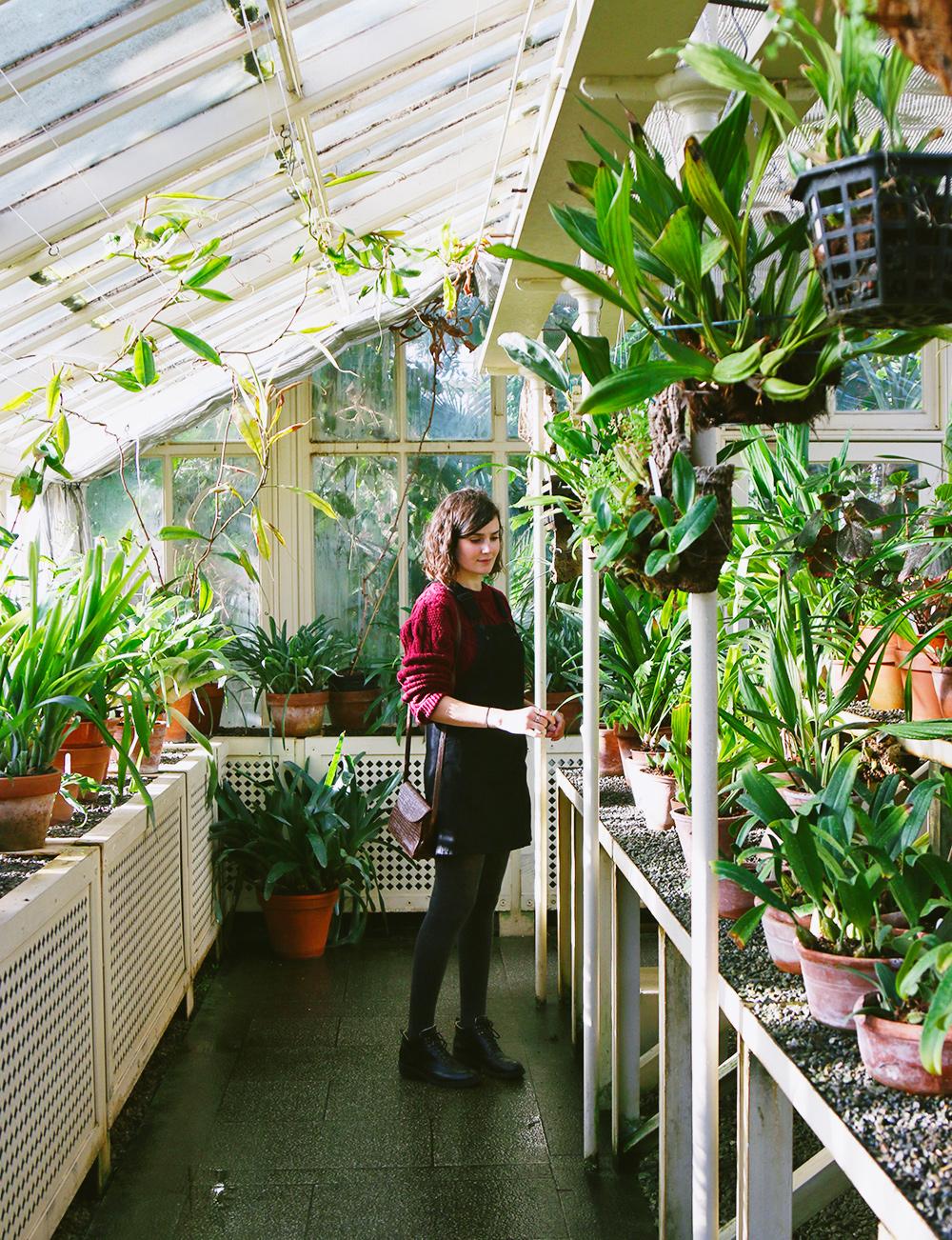 dublin-jardinbotanique2