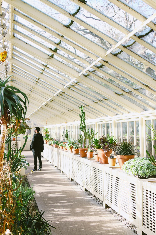dublin-jardinbotanique5
