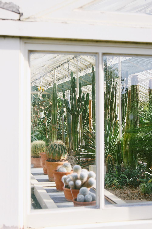 dublin-jardinbotanique7