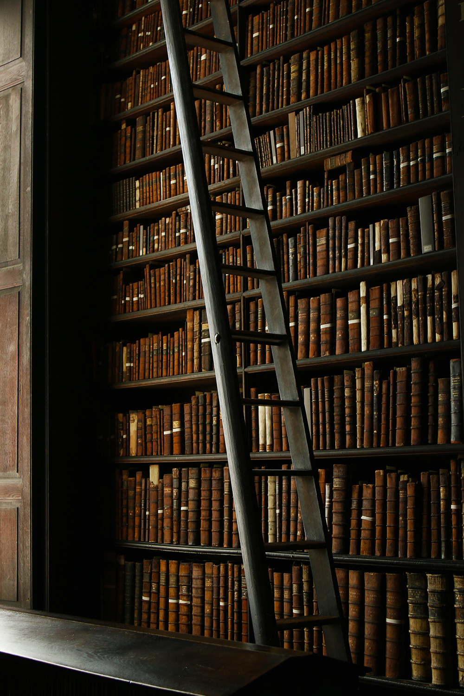 dublin-trinitycollege-bibliotheque4
