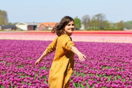 visite-champs-tulipes-lisse-hollande