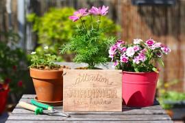 conseils-jardinage-ecolo