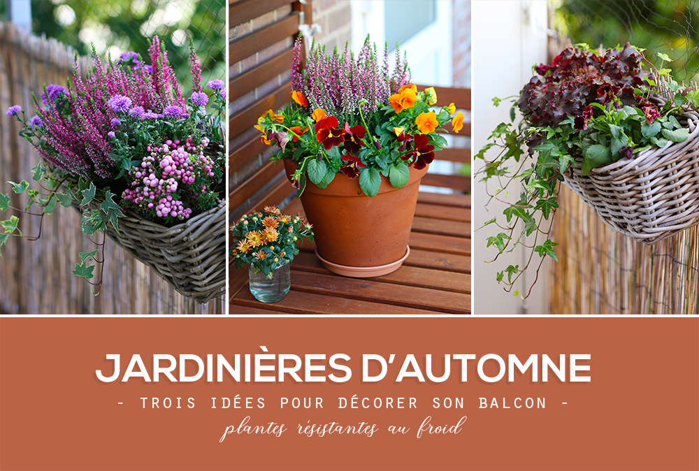 jardinieres-automne-idees-exemples-conseils