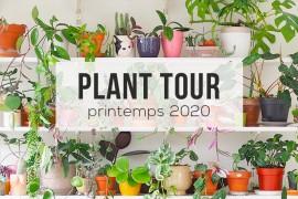 miniature-planttour2020-blog
