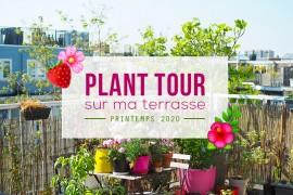 planttour-terrasse2020