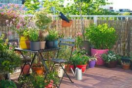 cottage-garden-balcon